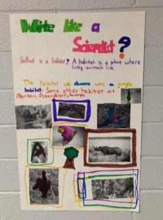 Our Grade Four Class Blog » Grade 7 Science