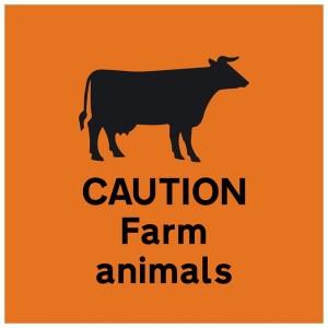 farm safety N.L.