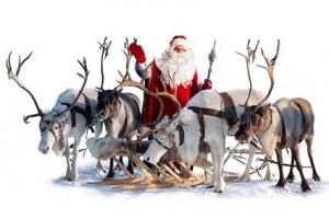181634-425x283-santas-deer