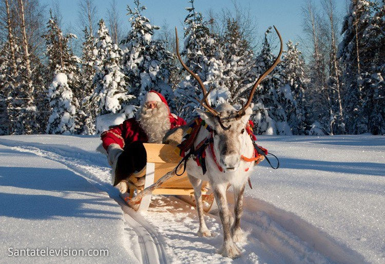 father_christmas_reindeer