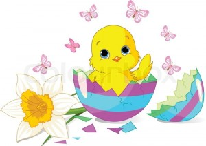 1739843-easter-chick-sitting-in-the-broken-easter-egg